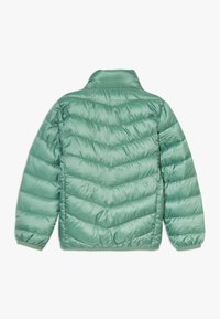 Color Kids - ENZO PADDED  - Outdoor jacket - cactus leaf - 1