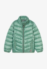 Color Kids - ENZO PADDED  - Outdoor jacket - cactus leaf - 3