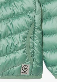 Color Kids - ENZO PADDED  - Outdoor jacket - cactus leaf - 4
