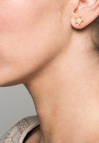 SNÖ of Sweden - STAR SMALL EAR - Pendientes - gold/clear - 0