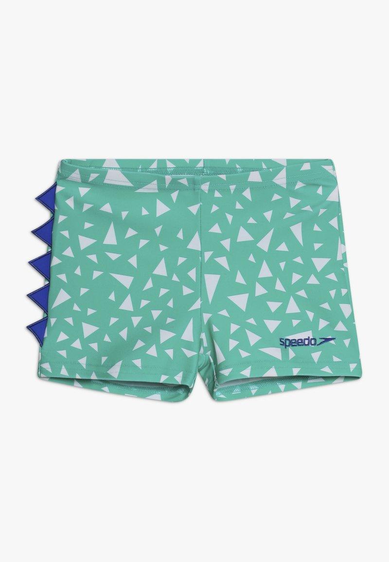 Speedo - CROC - Zwemshorts - emerald/beaut blue