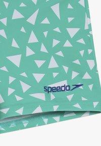 Speedo - CROC - Zwemshorts - emerald/beaut blue - 3