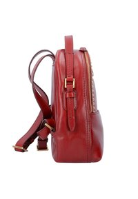 The Bridge - ROCK CITY - Tagesrucksack - red currant - 3
