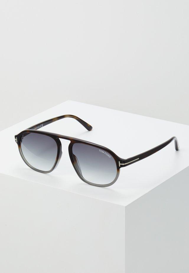 Solglasögon - havana/grey