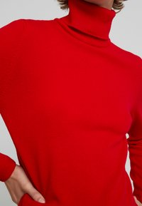 Benetton - TURTLE NECK - Trui - dark red - 4
