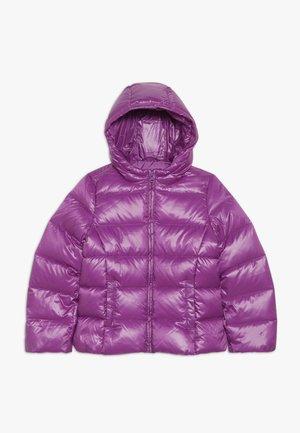 JACKET - Down jacket - purple