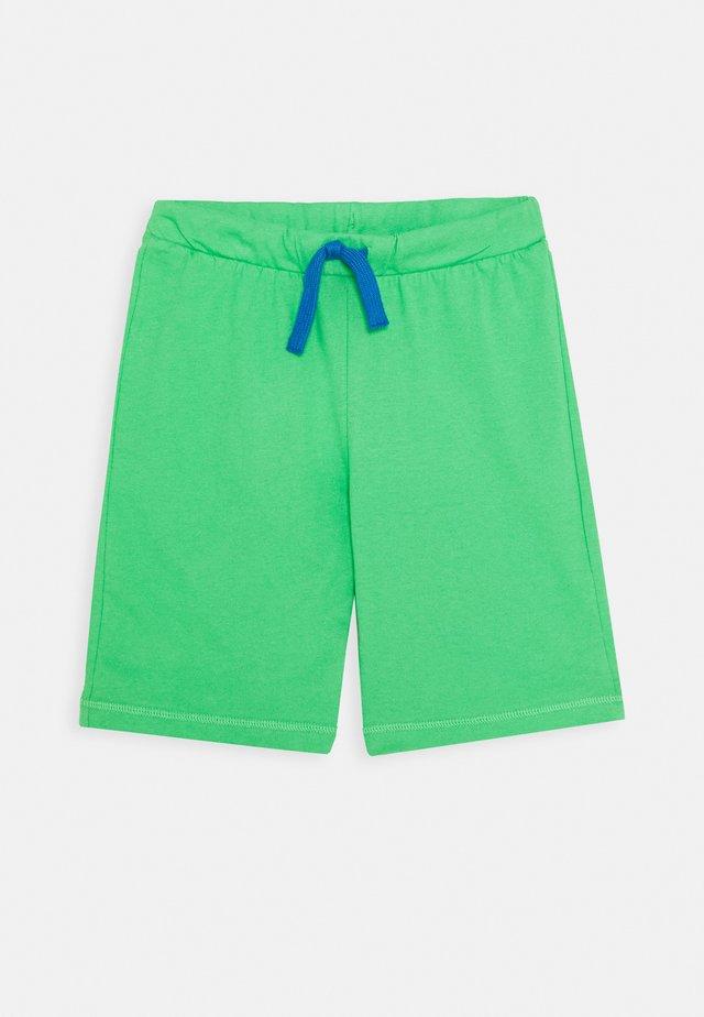BERMUDA - Trainingsbroek - green