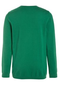 Benetton - BOY  - Jumper - green - 1