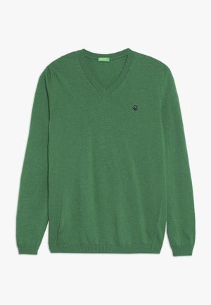 V NECK  - Trui - green