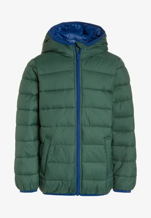 JACKET - Talvitakki - dark green