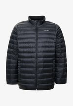 LIGHT DOWN LINER - Light jacket - black