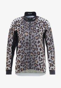 leopoard
