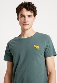 Abercrombie & Fitch - EXPL ICON CREW FRINGE  - Basic T-shirt - green - 4
