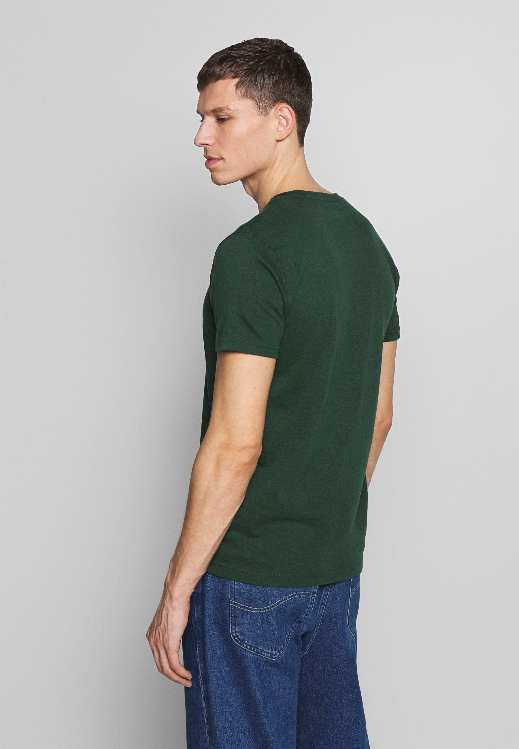 Abercrombie & Fitch HOLIDAY APPLIQUE  - T-shirt z nadrukiem - green
