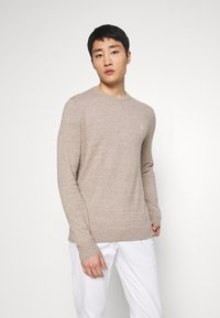 Abercrombie & Fitch - CORE ICON CREW - Jumper - textured oatmeal - 0