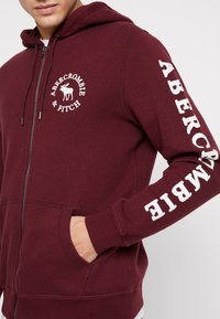 Abercrombie & Fitch - LOGOCON APPLIQUE - Collegetakki - burgundy - 5