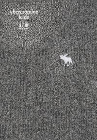 Abercrombie & Fitch - COZY HENLEY - Top sdlouhým rukávem - grey - 3