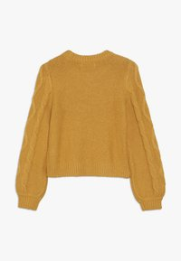 Abercrombie & Fitch - CABLE SHINE LAYER - Jumper - yellow - 1