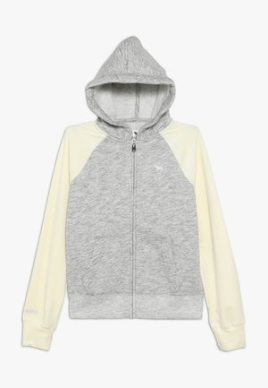 CORE  - Mikina na zip - grey