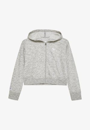 CORE FULLZIP  - Bluza rozpinana - grey