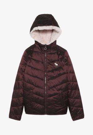 COZY PUFFER - Zimní bunda - burg/pink