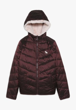COZY PUFFER - Winter jacket - burg/pink