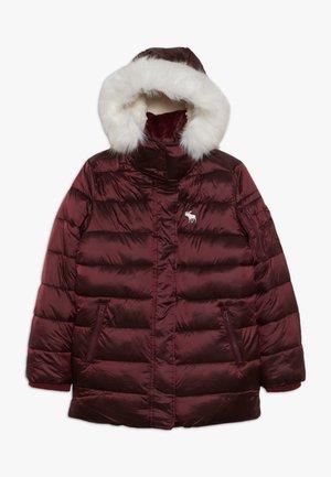 ADVENTURE - Veste d'hiver - burgundy shine
