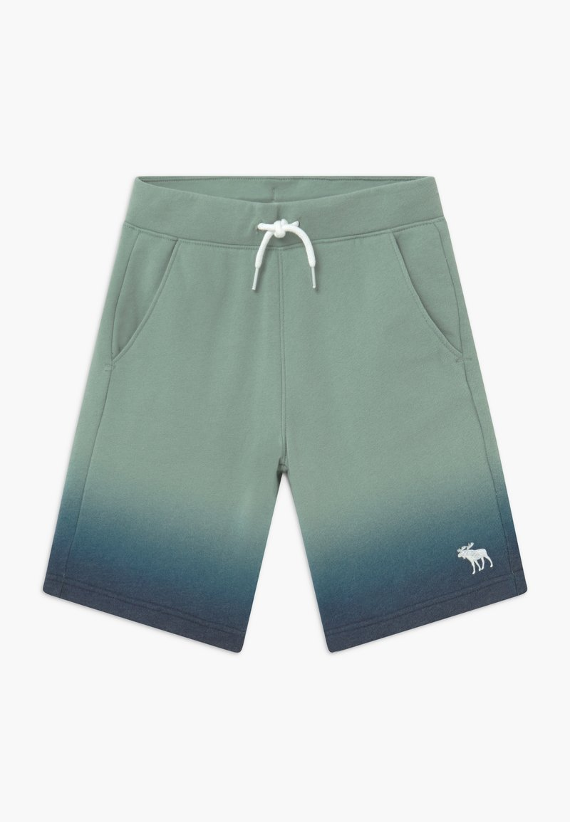 Abercrombie & Fitch - ICON - Tracksuit bottoms - green/dark blue