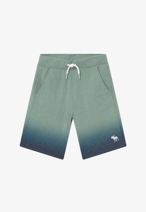ICON - Trainingsbroek - green/dark blue