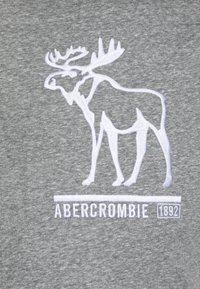Abercrombie & Fitch - TECH LOGO - Triko spotiskem - grey - 2