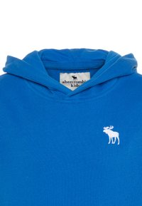 Abercrombie & Fitch - ICON - Hoodie - blue - 2