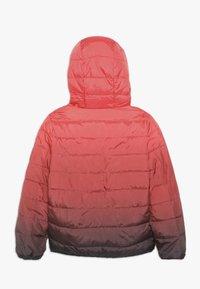 Abercrombie & Fitch - COZY PUFFER OMBRE  - Zimní bunda - red ombre - 1
