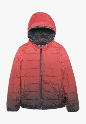 COZY PUFFER OMBRE  - Zimní bunda - red ombre