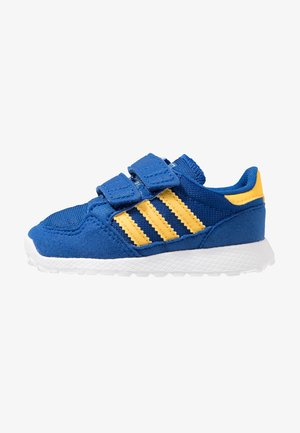 FOREST GROVE - Sneakers laag - collegiate royal/bold gold/blue