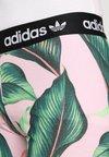 adidas Originals - TIGHT - Legging - multicolor