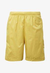 adidas Originals - SHORTS - Shorts - yellow - 7