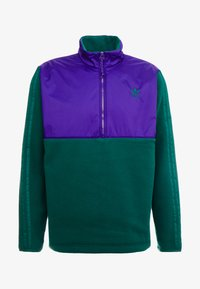 adidas Originals - WINTERIZED HALF-ZIP TOP - Fleece trui - coll green / coll purple / solar green / ref silver - 4