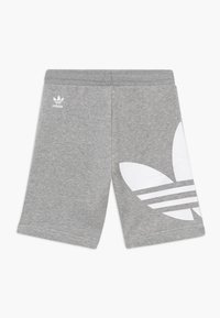 adidas Originals - Tracksuit bottoms - mgreyh/white - 1