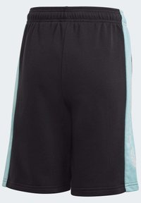 adidas Originals - PANEL SHORTS - Shorts - black - 5