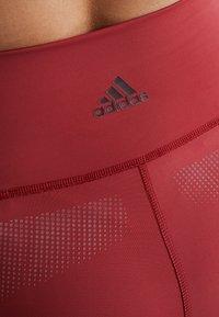 adidas Performance - SPORT CLIMACOOL WORKOUT HIGH WAIST LEGGINGS - Medias - active maroon/black - 6