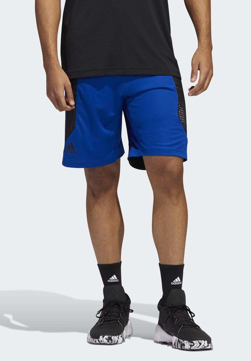 adidas Performance - CREATOR 365 SHORTS - Urheilushortsit - blue