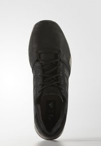 adidas Performance - ANZIT DLX - Obuwie hikingowe - core black - 1