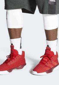 adidas Performance - PRO NEXT 2019 SHOES - Koripallokengät - red - 0