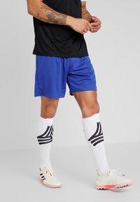 adidas Performance - PARMA 16 - Sportovní kraťasy - bold blue/white - 0