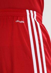 adidas Performance - SQUADRA 17 SHORTS - Pantaloncini sportivi - powred/white - 3
