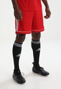 adidas Performance - SQUADRA 17 SHORTS - Pantaloncini sportivi - powred/white - 0