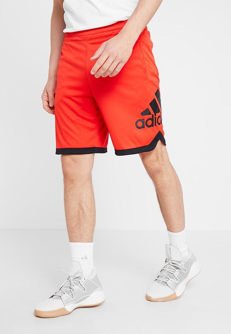 adidas Performance - kurze Sporthose - actred