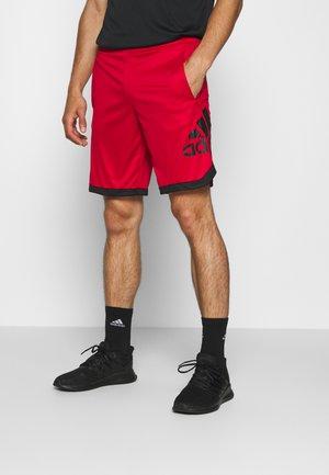 Pantaloncini sportivi - scarlet