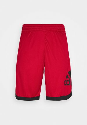 Sports shorts - scarle