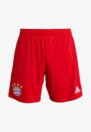 FC BAYERN MÜNCHEN H SHO - Sports shorts - red